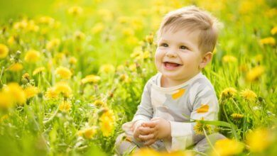 Toddler boy in sunflower field - Gillespie Approach–Craniosacral Fascial Therapy
